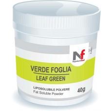 Powder fat-soluble colors Leaf Green 40g