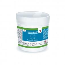 Light Blue - NaturArt powder  80g