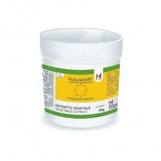 Yellow - NaturArt powder 80g