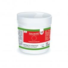 Red - NaturArt powder  80g